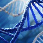 "DNA 'Writers"" Set Goal: Recoding Human Cells To Resist Viruses"