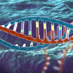 TIME Magazine Showcases CRISPR Gene Editing Technology