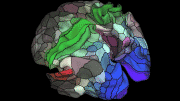 A new map based on brain scan data collected by the Human Connectome Project. The data revealed 180 new regions. Credit Matthew F. Glasser, David C. Van Essen