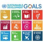 Sustainable Development Goals Take Hold As A Universal Impact Investment Framework