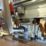 Dairy Farmers Offset Labor Problems With Sophisticated Robots