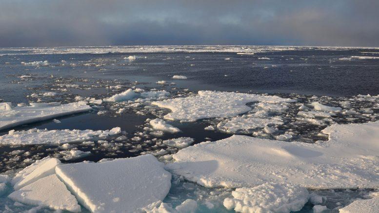 Arktischen Meereises