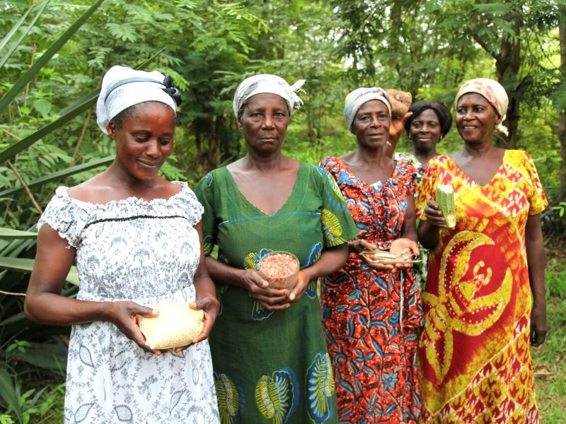 Exchanging seed in Ghana