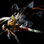 Cyborg Dragonflies Can Spy Where Other Drones Cannot