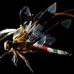 Cyborg Dragonflies kan spionera där andra drönare inte kan