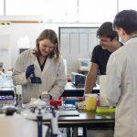 Hampton Creek: la carne cultivada en laboratorio llegará a los estantes de los supermercados por 2018