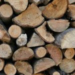 72.8% Of World's Renewable Energy Is Made By Burning Wood & Dung