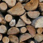 72.8% af verdens vedvarende energi fremstilles ved at brænde træ og svamp
