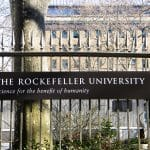 Rockefeller University: Doping Western Cultures With Oxytocin Will Cure Hatred Of Refugees