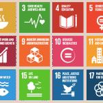 Revendicare: China va fi cheia creării unei economii circulare globale (verzi)