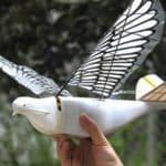 Los drones Robo-Bird de China llevan la vigilancia ciudadana a nuevas alturas