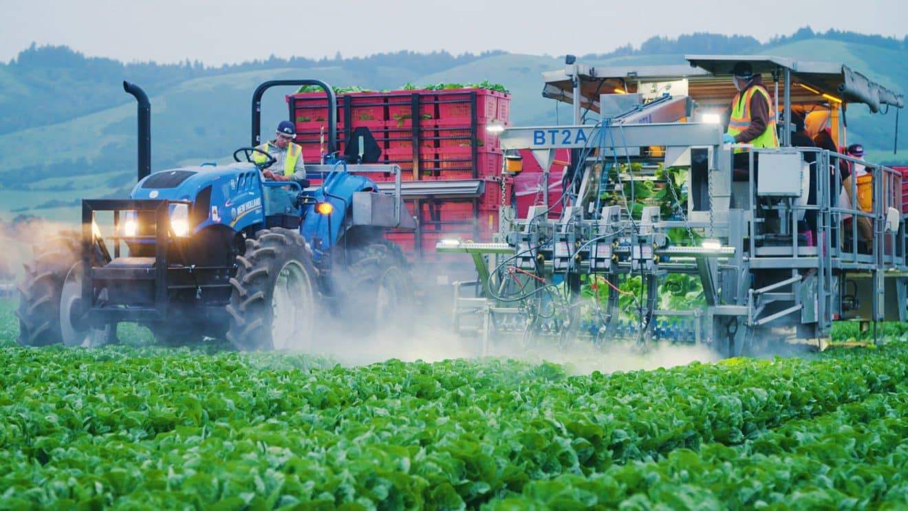 Robots Are Rapidly Replacing Immigrant Farm Workers
