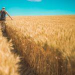 Foreigners Now Own 30 Million Acres Of Prime U.S. Farmland