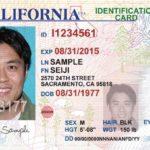 FBI, ICE vendte DMV-fotos til overvågning Behemoth
