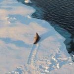 Massiv tillväxt av isisen i Antarktis Portends New Ice Age