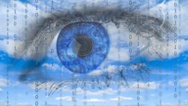 Digital panopticon