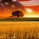 Mercola: Lawless Technocrats Are Destroying America