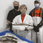 Fish Story: Genetically Engineered Salmon To Hit Dinner Plates